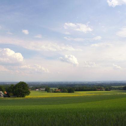 felder-landschaft