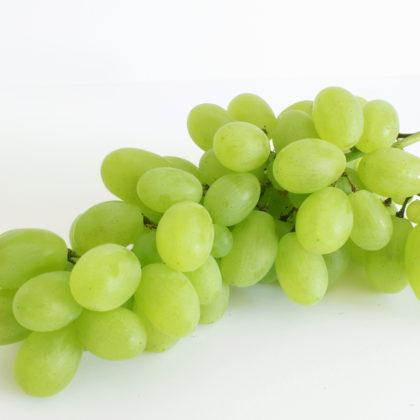 gruene-weintrauben