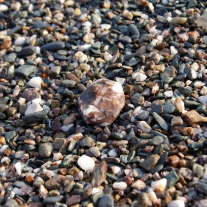 nasse-steine-strand