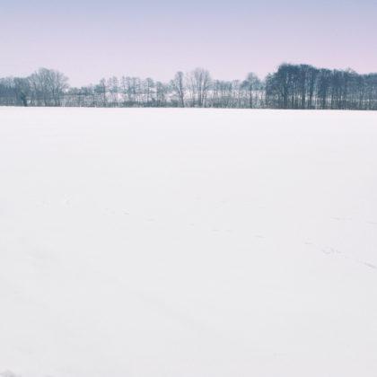 schneelandschaft-felder