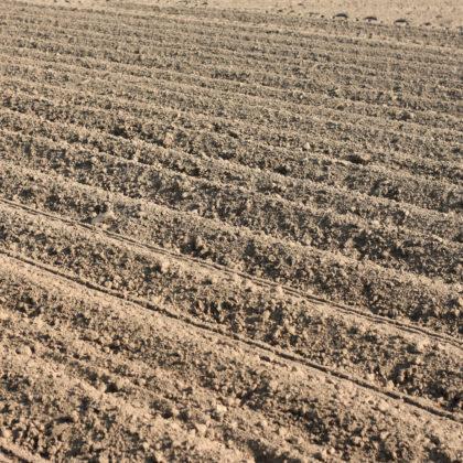 acker-landwirtschaft