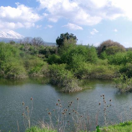 aetna-landschaft