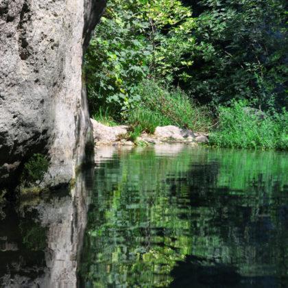 fluss-natur