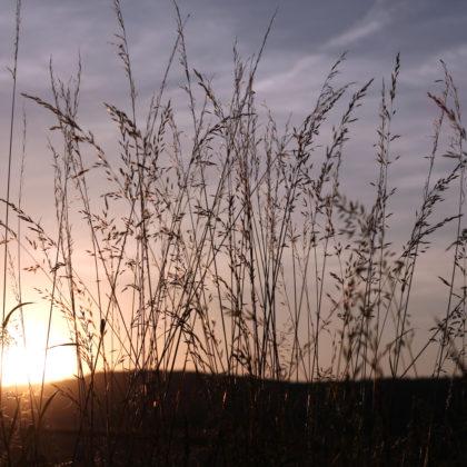 graeser-sonnenuntergang