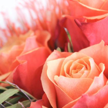 rosen-blumenstrauss
