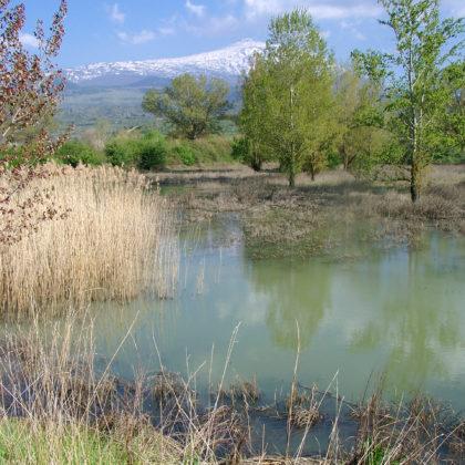 see-landschaft-aetna