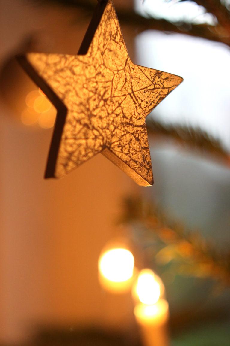 weihnachten stern  kostenlose bilder download  titania foto