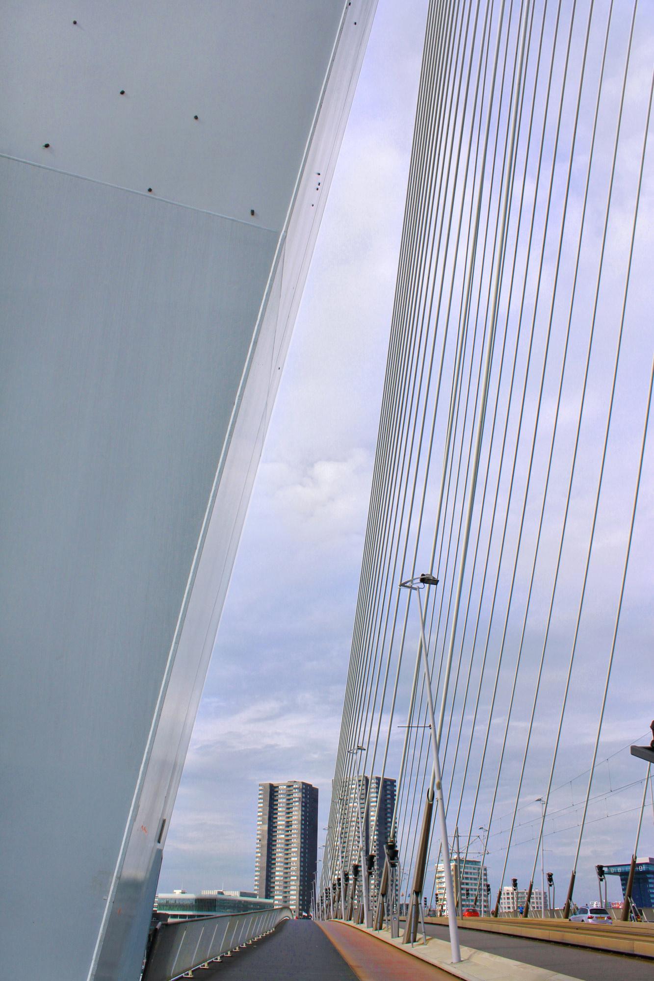 Erasmusbrücke Pylon