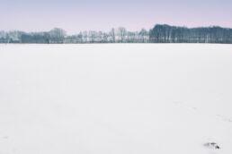 Schneelandschaft Felder
