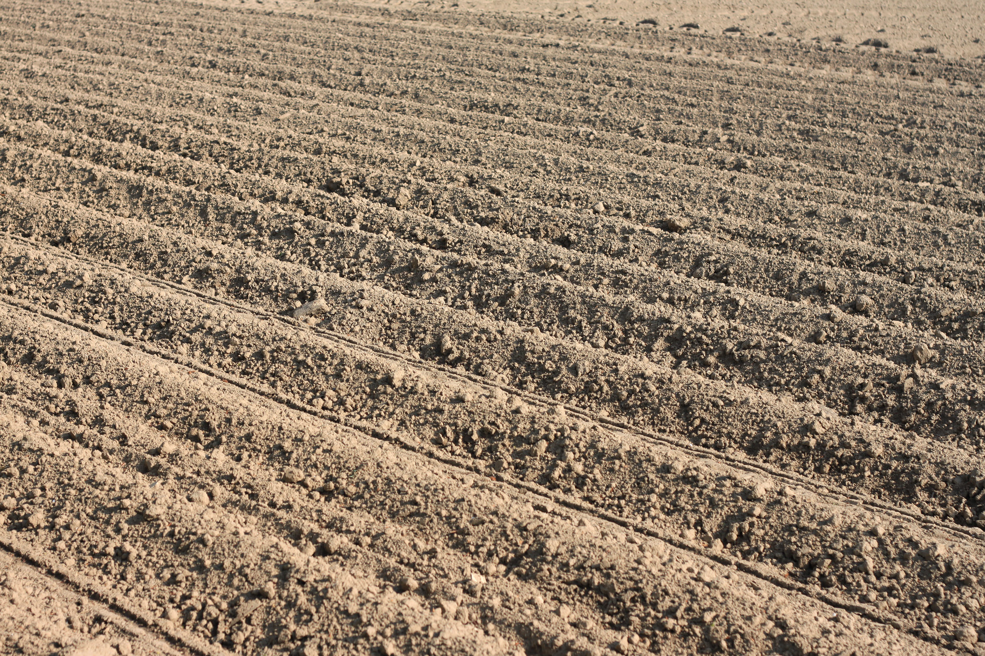 Acker Landwirtschaft