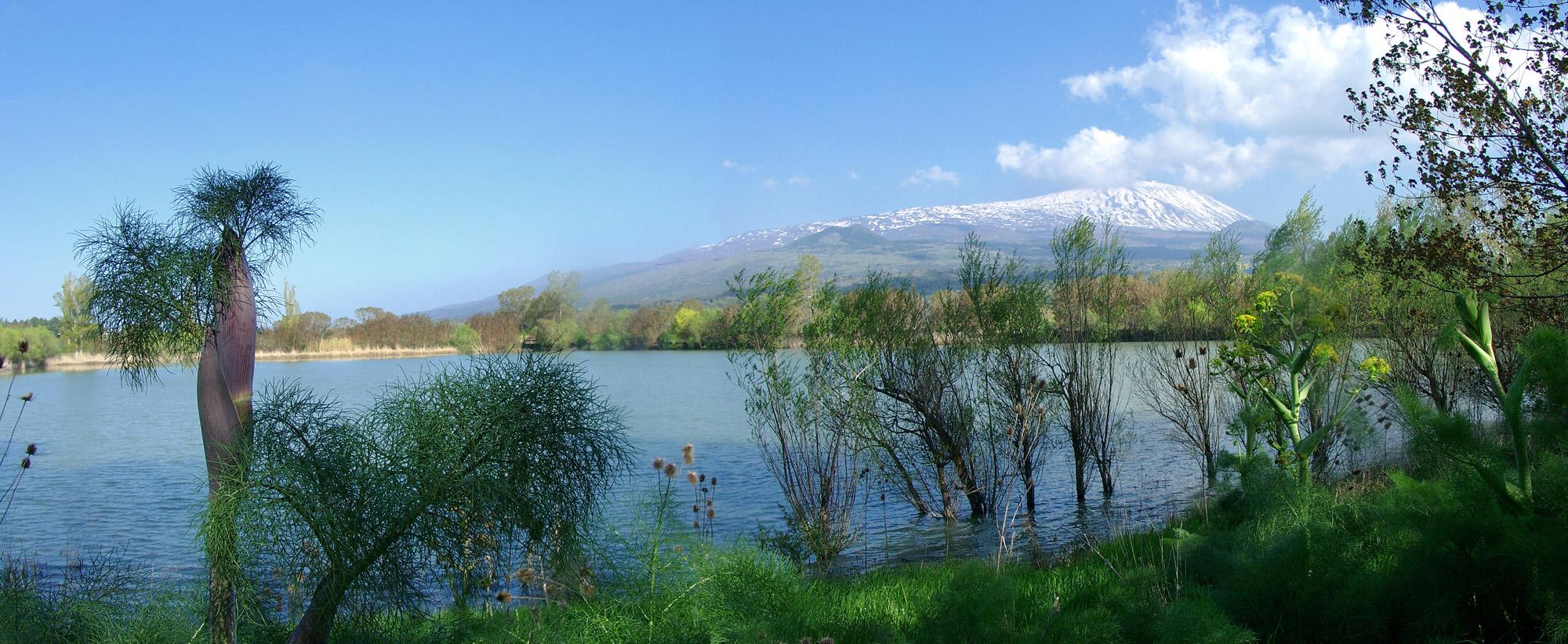 Landscape Mount Etna