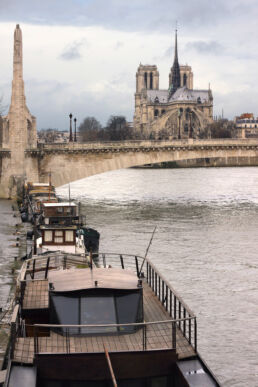 Notre Dame Seine Paris