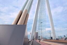 Rotterdam Erasmusbrücke