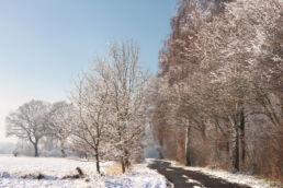Schneelandschaft Strasse