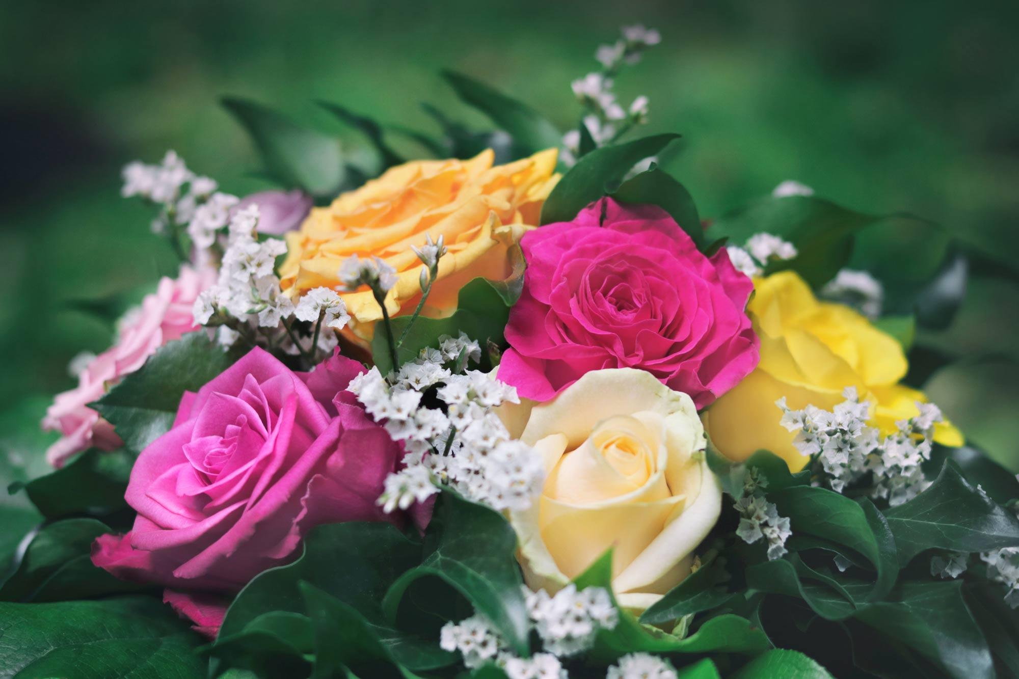 Blumenstrauß Rosen - kostenlose Bilder download | Titania Foto